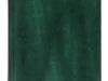 terminarz-nebraska-zielony
