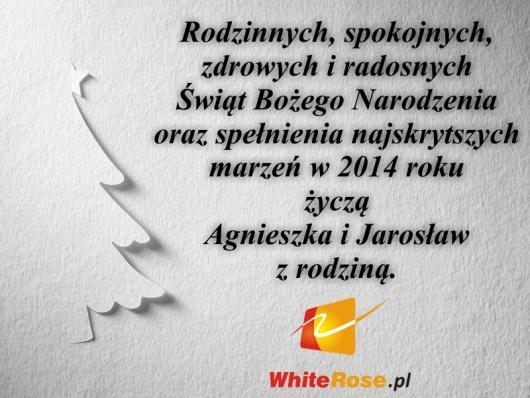 zyczenia-na-boze-narodzenie-2013-v-white-rose